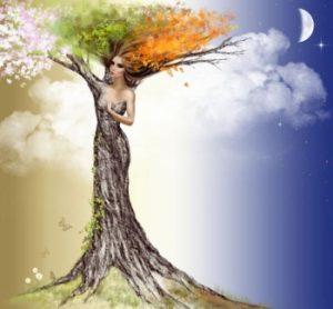 Стихия Дерева