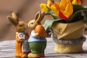 Кролики и зайцы