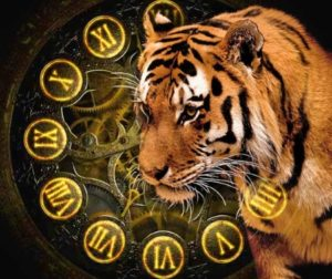 Тигр – владелец территорий